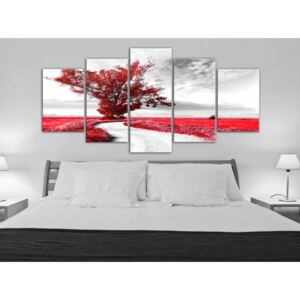 Canvas Print Trees: Tree near the Road (5 Parts) Red