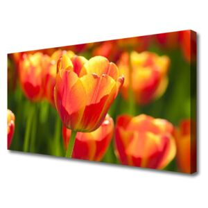Canvas Wall art Tulips floral yellow red 100x50 cm