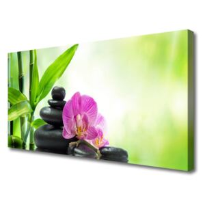 Canvas Wall art Bamboo tube flower stones floral green black pink 100x50 cm