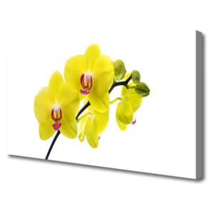 Canvas Wall art Flowers floral green 100x50 cm