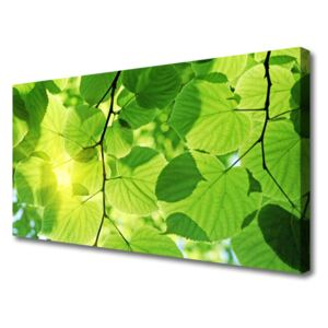 Canvas Wall art Leaves floral green brown 100x50 cm