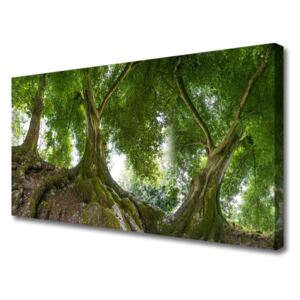 Canvas Wall art Trees nature brown green 100x50 cm