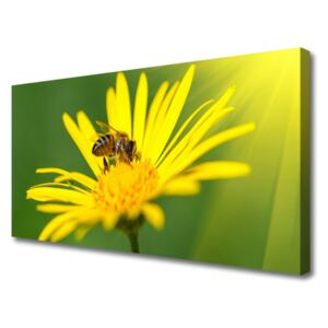 Canvas Wall art Wasp flower floral black yellow 100x50 cm