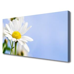 Canvas Wall art Daisy floral yellow white 100x50 cm
