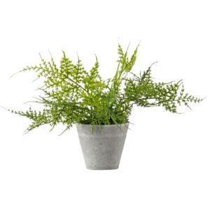 Faux Potted Ferns