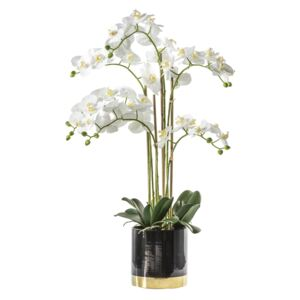 Faux White Orchid in Black Pot