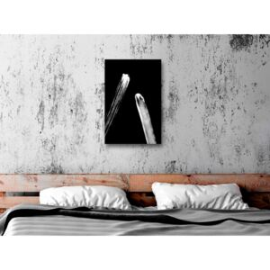 Canvas Print Black and White: Comets (1 Part) Vertical