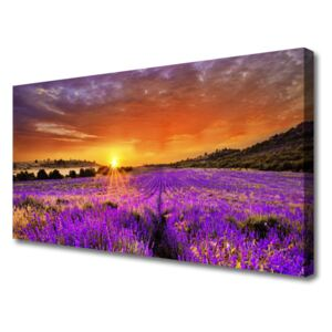 Canvas Wall art Sun meadow flowers nature yellow pink 100x50 cm