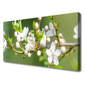 Canvas Wall art Branches flowers floral green white 100x50 cm