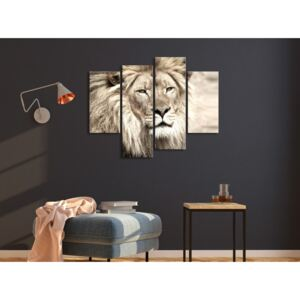 Canvas Print Cats: The King of Beasts (4 Parts) Beige