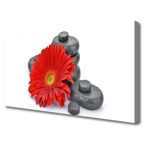 Canvas Wall art Flower stones floral red grey 120x60 cm