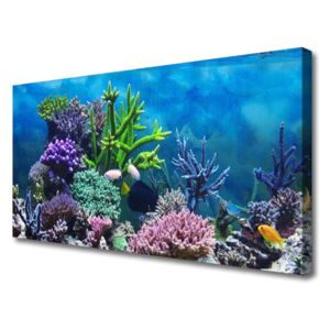 Canvas Wall art Coral reef nature multi 100x50 cm