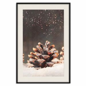 Poster Winter Pine Cone [Poster]