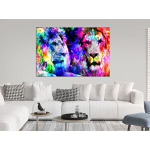 Canvas Print Cats: My Brother (1 Part) Wide
