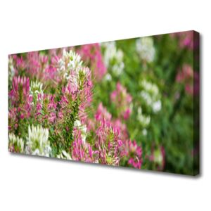 Canvas Wall art Flowers floral pink white green 100x50 cm