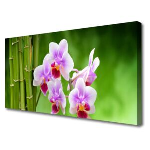 Canvas Wall art Bamboo tube flowers floral green pink 100x50 cm