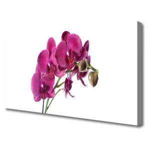 Canvas Wall art Flowers floral red 100x50 cm