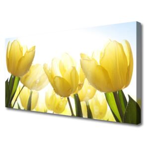 Canvas Wall art Tulips floral yellow 100x50 cm