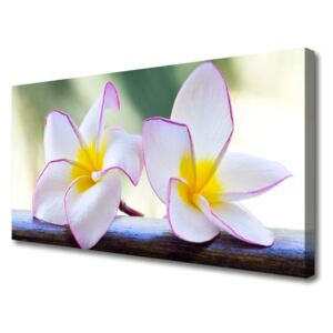 Canvas Wall art Flowers floral green pink 100x50 cm