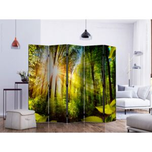 Room divider: Forest Hideout II [Room Dividers]