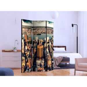 Room divider: Bird's Eye View of New York [Room Dividers]