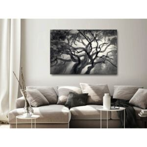 Canvas Print Trees: Lighted Branches (1 Part) Wide