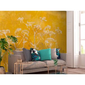 Wall mural Landscapes: Meadow Bathed in the Sun