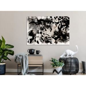 Canvas Print Black and White: Cat's Look (1 Part) Wide