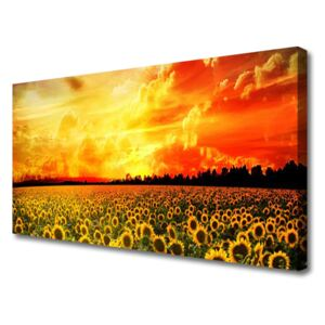 Canvas Wall art Meadow sunflowers floral green yellow brown 100x50 cm