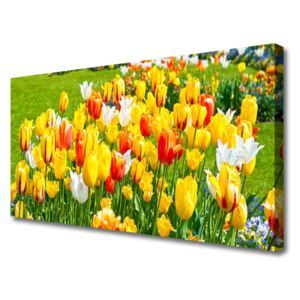 Canvas Wall art Tulips floral yellow red white 100x50 cm