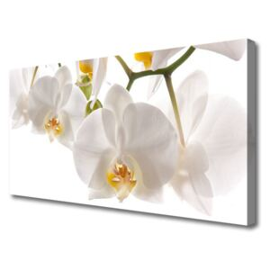 Canvas Wall art Flowers floral white 100x50 cm