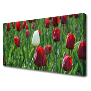 Canvas Wall art Tulips floral red white green 100x50 cm