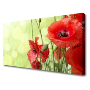 Canvas Wall art Poppies floral green red 100x50 cm