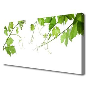 Canvas Wall art Branches leaves floral brown green 100x50 cm