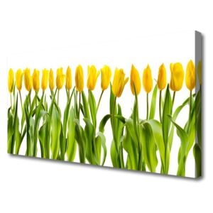 Canvas Wall art Tulips floral green yellow 100x50 cm