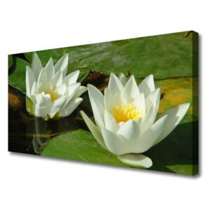 Canvas Wall art Flowers floral yellow white 100x50 cm