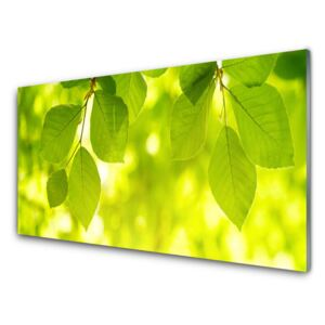 Glass Print Leaves floral green 100x50 cm