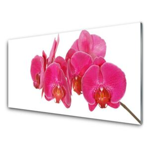 Glass Print Flowers floral red 100x50 cm