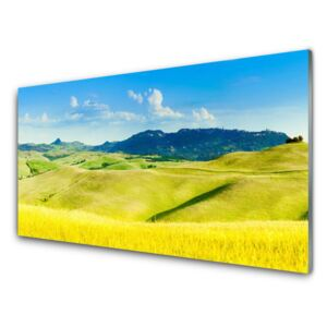 Glass Wall Art Country mountains landscape green blue 100x50 cm