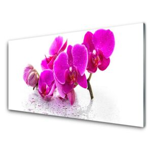 Glass Wall Art Flowers floral pink 100x50 cm