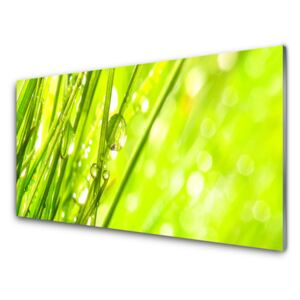 Glass Wall Art Weed nature green 100x50 cm