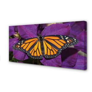 Canvas print Flowers colorful butterfly 100x50 cm