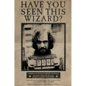 Poster Harry Potter - Wanted Sirius Black, (61 x 91.5 cm)